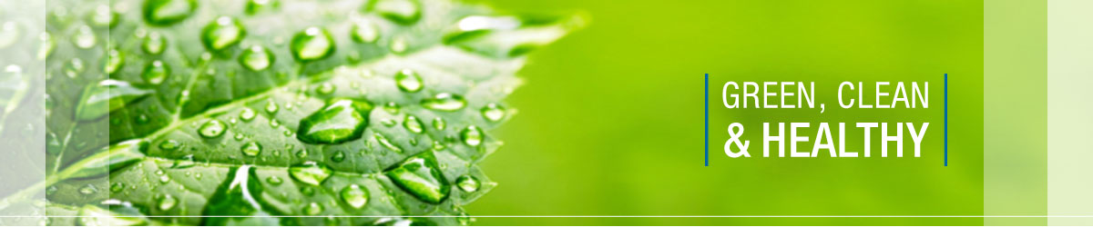 Green Cleaning Services Benefits